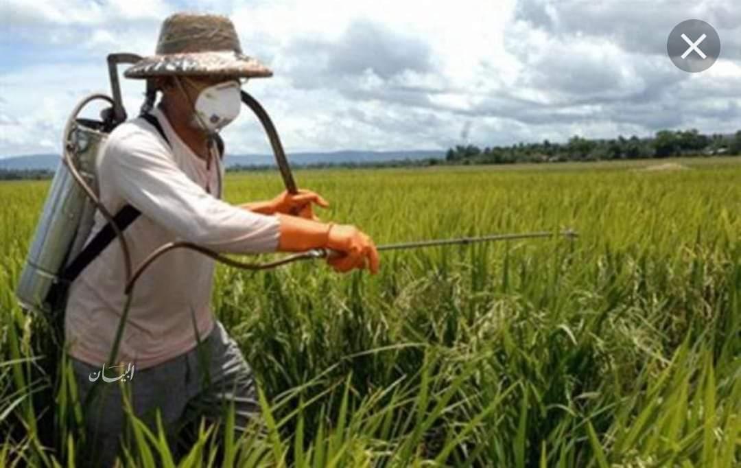 نتيجة بحث الصور عن المبيدات والأغذية الملوثة