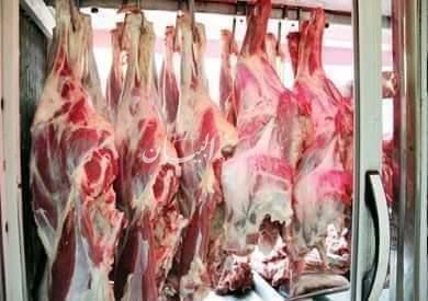 بإختصار أسعار اللحوم والأسماك والدواجن بالأسواق المصرية اليوم الخميس
