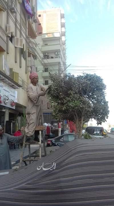 رئيس البلينا بسوهاج : حملة مكبرة لرفع 115 طن مخلفات وقص وتهذيب عدد من الأشجار