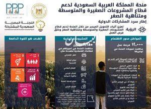 المشاط: 100 مليون جنيه لبنك الإسكندرية لتمويل برنامجي الحرف اليدوية والتحول الرقمي للمشروعات الصغيرة