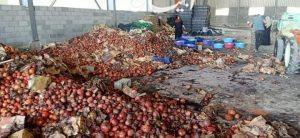 ضبط ٢٠ طن من الفاكهة الغير صالحة للإستخدام الآدمى بالبحيرة