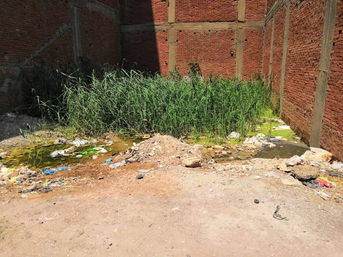 سكان عقار بطنطا يستغيثون بمحافظ الغربية لطفح مياه الصرف ...